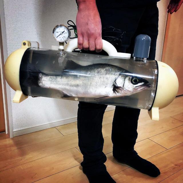 Người Nhật phát minh ra bể di động để dắt cá đi chơi, tưởng vô dụng nhưng lại cháy hàng mới lạ - Ảnh 6.