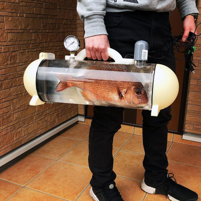 Người Nhật phát minh ra bể di động để dắt cá đi chơi, tưởng vô dụng nhưng lại cháy hàng mới lạ - Ảnh 7.