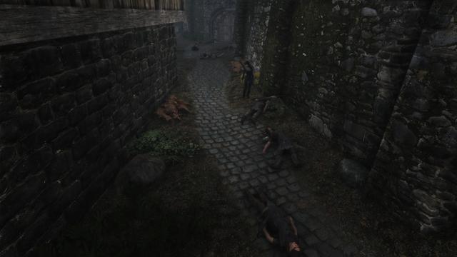 Game thủ rảnh nhất năm: Quét sạch hơn 2000 NPC, gần 2500 sinh vật trong Skyrim để được 1 mình 1 cõi - Ảnh 1.