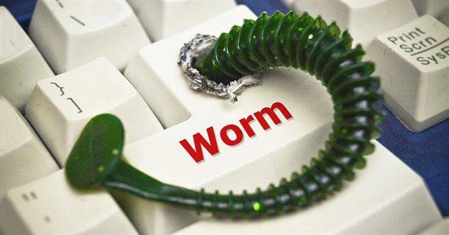 Worm là gì? Tại sao chúng lại cực kỳ nguy hiểm? - Ảnh 1.