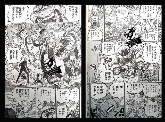 One Piece chap 1017: Tiết lộ ban đầu về hình dạng lai của Queen Bệnh Dịch, tóc vàng thì biến hình cũng xấu - Ảnh 1.