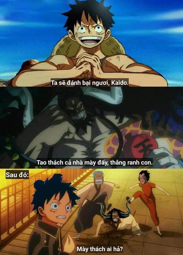 One Piece: Top 5 ảnh chế hot nhất tuần qua, Who Who và lời khẩn cầu Anh Shanks hãy trả lại thanh xuân cho em - Ảnh 3.