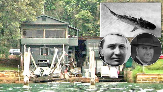 Tay cá mập - Vụ án bí ẩn ly kỳ bậc nhất nước Úc, đến giờ vẫn chưa có lời giải - Ảnh 3.
