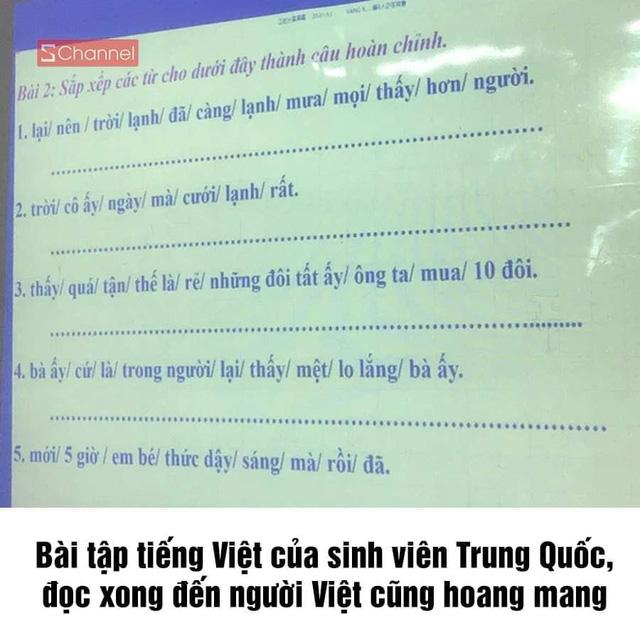 CĐM xôn xao trước bài tập tiếng Việt cho sinh viên nước ngoài, nhiều người đọc xong cũng thấy hoang mang - Ảnh 1.