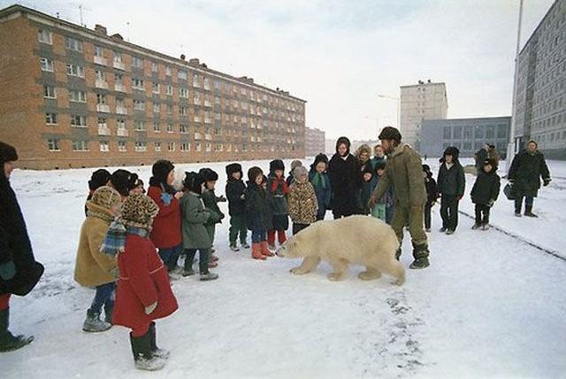Những hình ảnh kỳ quái chỉ có thể xảy ra ở nước Nga - Ảnh 15.