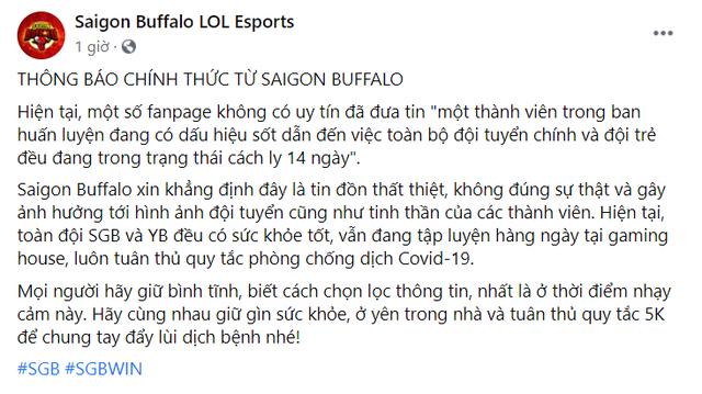 Bị tung tin đồn có ca F0 trong Gaming House, Saigon Buffalo đưa ra phản hồi đanh thép - Ảnh 2.