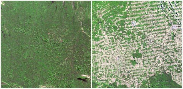 Với công nghệ, chúng ta có thể thấy Trái đất đã thay đổi ra sao trong 100 năm qua - Ảnh 9.