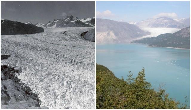 Với công nghệ, chúng ta có thể thấy Trái đất đã thay đổi ra sao trong 100 năm qua - Ảnh 14.