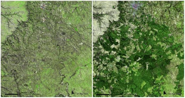 Với công nghệ, chúng ta có thể thấy Trái đất đã thay đổi ra sao trong 100 năm qua - Ảnh 15.