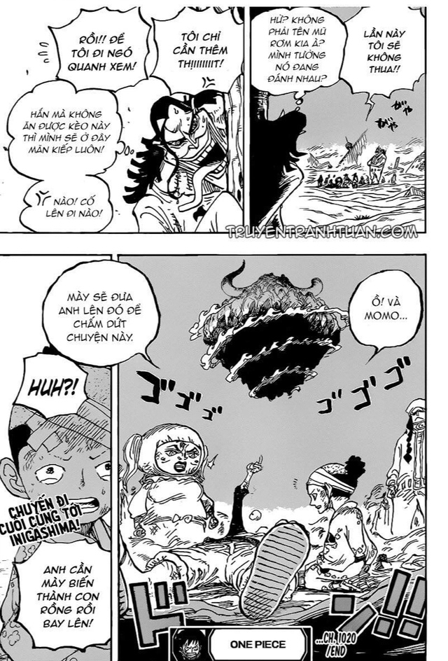 """Xuất hiện trong One Piece chap 1020, nhiều độc giả cho rằng Caribou chính là """"kẻ theo chân vĩ đại, chúa tể ăn hôi"""" - Ảnh 1."""