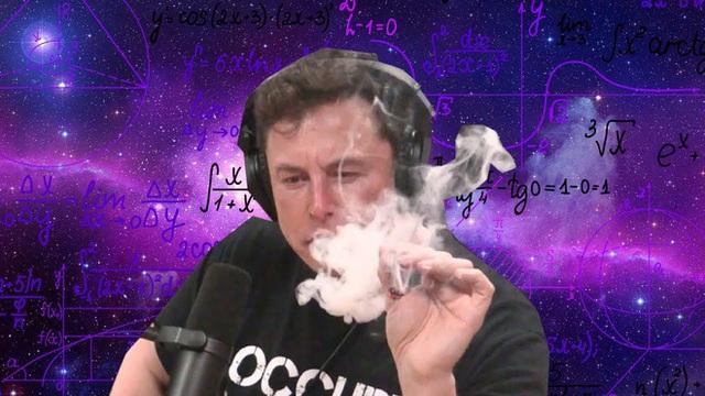 Elon Musk cho rằng ký sinh trùng tẩy não khiến con người tạo ra AI - Ảnh 3.
