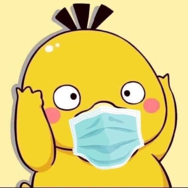 MXH tràn ngập ảnh chế về chú vịt vàng bối rối trong series Pokémon Photo-1-1629272552099344860908