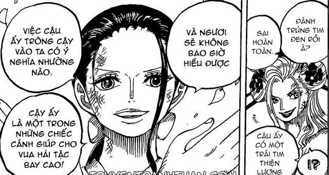 One Piece: Robin gọi Sanji là chiếc cánh của Vua Hải Tặc hoàn toàn có lý do thích hợp - Ảnh 4.