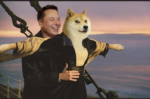 Elon Musk lại làm phép trên trang cá nhân, một đồng coin tăng giá tới hơn 1.000% chỉ trong ít giờ - Ảnh 4.