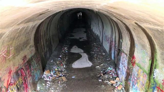 Tìm sự thật về đường hầm ma ám Inunaki và ngôi làng kinh dị nhất Nhật Bản: Vụ án mạng kinh hoàng và hàng tá chuyện rùng rợn - Ảnh 6.