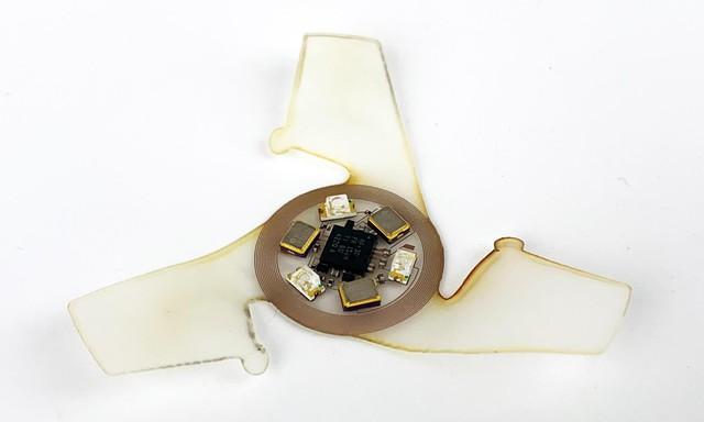 Các nhà khoa học đang phát triển vi xử lý biết bay, di chuyển theo đàn, hứa không dùng cho việc xấu - Ảnh 3.