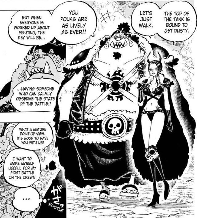 """Giả thuyết One Piece: Hiyori chính là """"chim trĩ"""" trong cậu bé quả đào thay vì Marco như chúng ta vẫn nghĩ? (P.2) - Ảnh 7."""