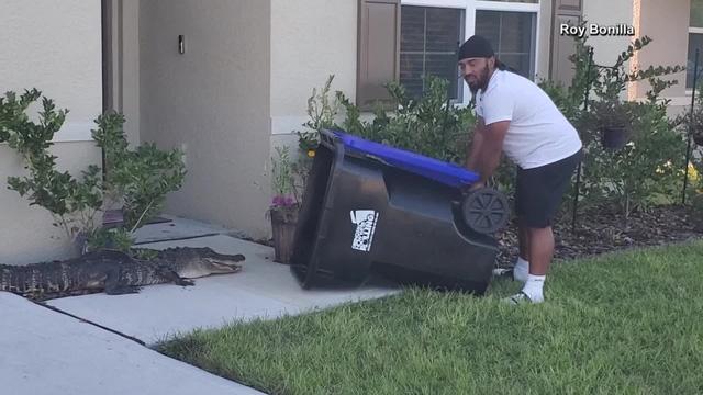 Không có đồ chơi, người đàn ông dùng thùng rác out play cá sấu trong một nốt nhạc - Ảnh 1.