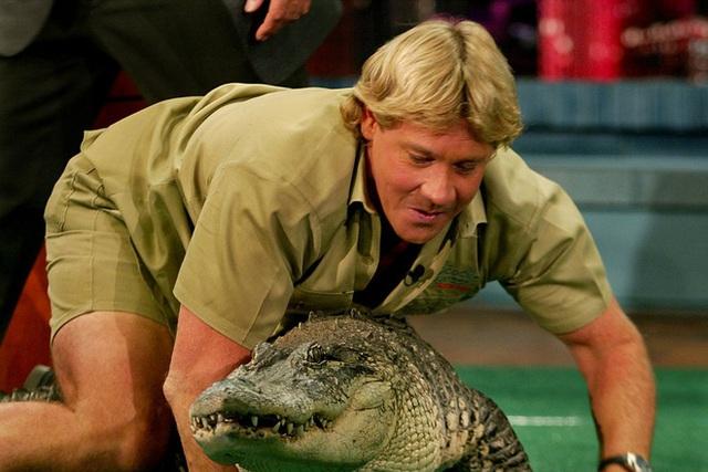 Cái chết nghiệt ngã của thợ săn cá sấu Steve Irwin: Nhà động vật học hàng đầu thế giới và câu chuyện sinh nghề tử nghiệp - Ảnh 1.