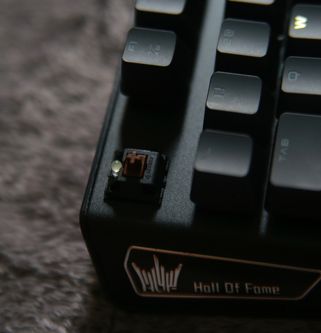 GALAX HOF Gaming Keyboard sử dụng switch cherry cao cấp, chiếc tôi đang dùng ở đây là brown switch.