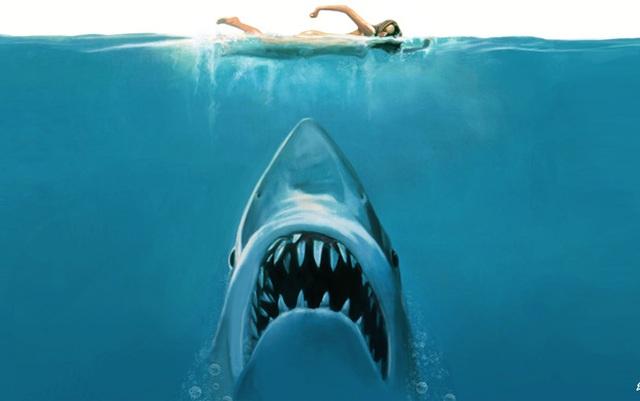 Jaws được xem là kẻ tiên phong trong việc chống lại cá mập trên phim ảnh