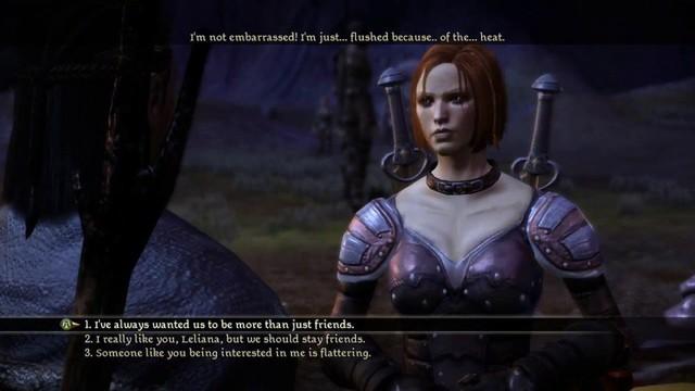 Dragon Age Origin: Gieo nhân nào, gặt quả nấy - Ảnh 3.
