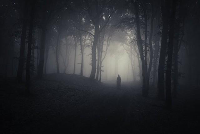 Những hội chứng sợ kỳ lạ mà có thể bạn cũng đang bị nhưng không biết gọi tên thế nào - Ảnh 3.