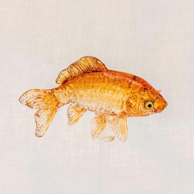 Mục sở thị nghệ thuật làm kẹo mút hình động vật đặc sắc nhất Nhật Bản - Ảnh 3.