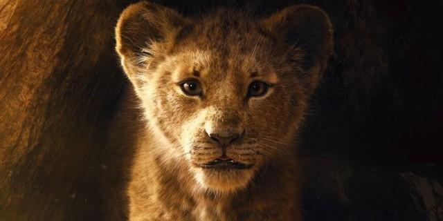 6 câu hỏi mà fan không thể không thắc mắc ở The Lion King bản remake - Ảnh 4.