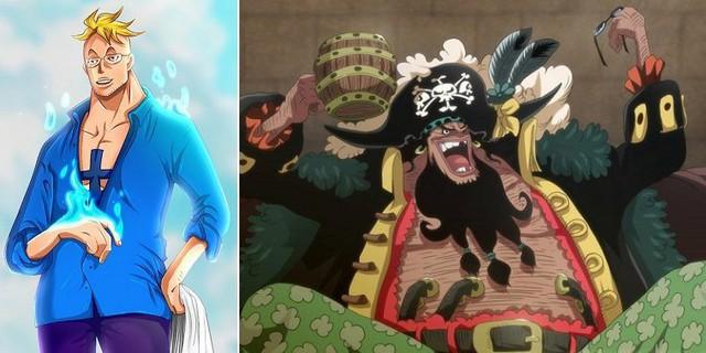 One Piece: Phượng Hoàng Marco có lẽ là người duy nhất biết về bí mật của Tứ Hoàng Blackbeard? - Ảnh 1.