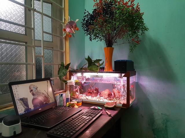 Chiêm ngưỡng những góc gaming tuyệt đẹp của game thủ Việt trong tháng Tết
