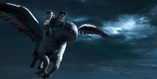 20 điều vô nghĩa mà chả mấy ai biết về bộ ba nhân vật chính của Harry Potter (P.1) - Ảnh 6.