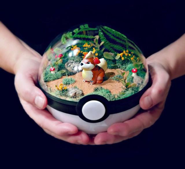Những khu vườn Pokeball trong lòng bàn tay khiến fan ruột Pokemon thích mê từ cái nhìn đầu tiên - Ảnh 1.