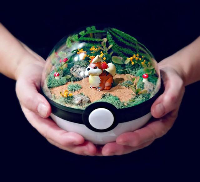 Những khu vườn Pokeball trong lòng bàn tay khiến fan ruột Pokemon thích mê từ cái nhìn đầu tiên - Ảnh 2.