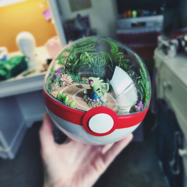 Những khu vườn Pokeball trong lòng bàn tay khiến fan ruột Pokemon thích mê từ cái nhìn đầu tiên - Ảnh 11.
