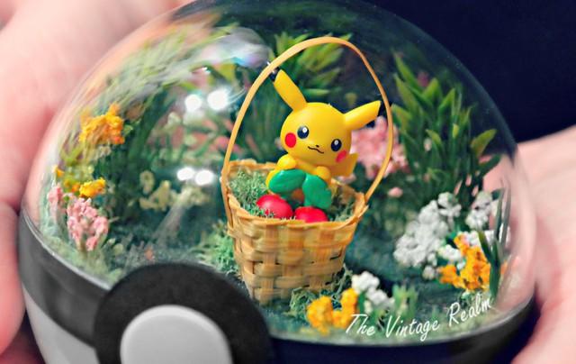 Những khu vườn Pokeball trong lòng bàn tay khiến fan ruột Pokemon thích mê từ cái nhìn đầu tiên - Ảnh 4.