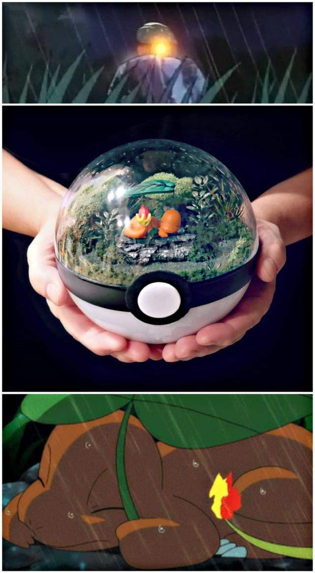 Những khu vườn Pokeball trong lòng bàn tay khiến fan ruột Pokemon thích mê từ cái nhìn đầu tiên - Ảnh 7.