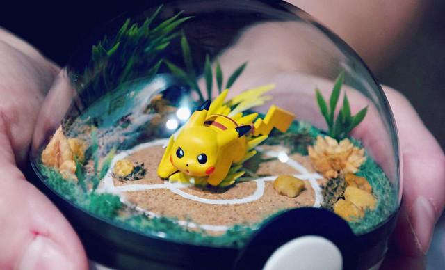 Những khu vườn Pokeball trong lòng bàn tay khiến fan ruột Pokemon thích mê từ cái nhìn đầu tiên - Ảnh 10.