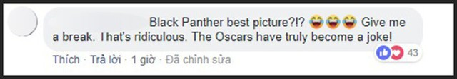 Hậu đề cử Oscar 2019: Dân mạng rần rần chửi bới Viện Hàn lâm vì đề cử Black Panther là Phim Xuất sắc - Ảnh 16.