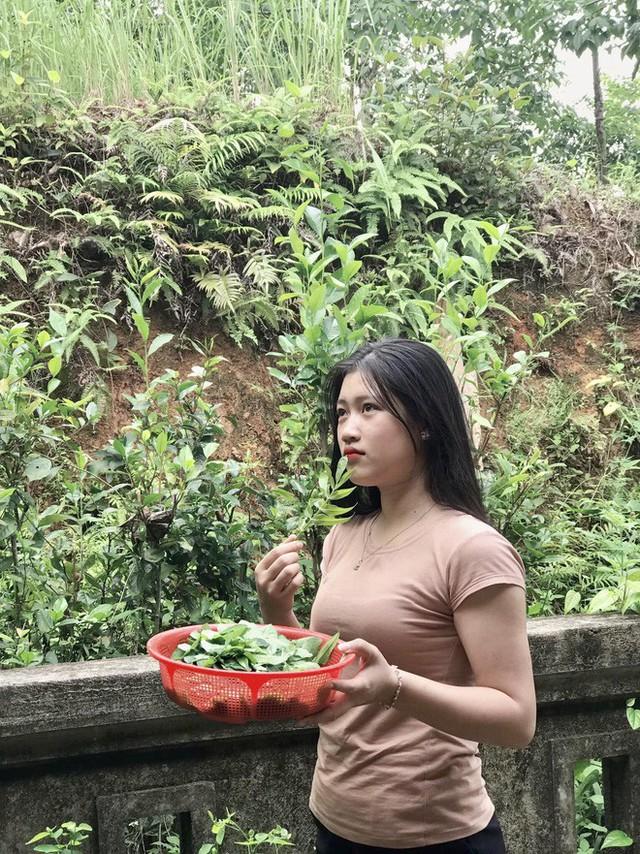 Chỉ ra vườn hái rau nấu canh, cô gái không ngờ mình bỗng nổi tiếng khắp mạng xã hội - Ảnh 3.