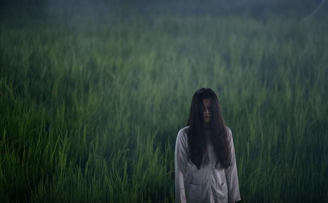 Bắc Kim Thang thu về 30 tỷ đồng sau 3 ngày công chiếu: Bộ phim này có những điểm xuất sắc nào? - Ảnh 2.