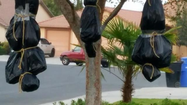 Dư luận tranh cãi về những màn trang trí Halloween khiếp đảm: Thú vị hay đáng dẹp bỏ? - Ảnh 7.