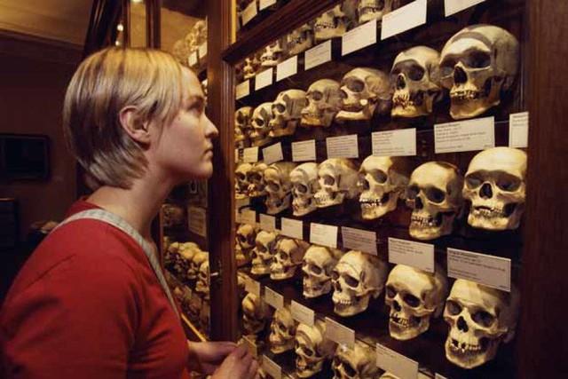 10 viện bảo tàng kỳ dị trên thế giới, tất cả chúng đều sẽ làm bạn ngỡ ngàng - Ảnh 5.