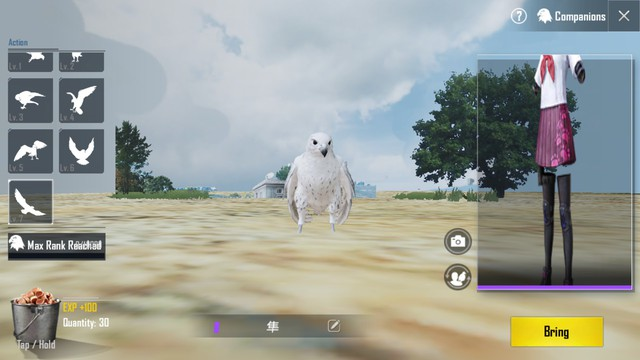 PUBG Mobile phiên bản 0.12 sẽ cập nhật Bạn đồng hành, súng RPG và Zombie Mode nâng cao - Ảnh 1.