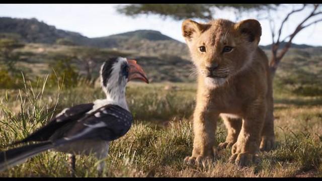 Disney tung tạo hình live-action của bộ đôi hài hước Timon và Pumbaa trong trailer mới của phim Vua Sư Tử - Ảnh 9.