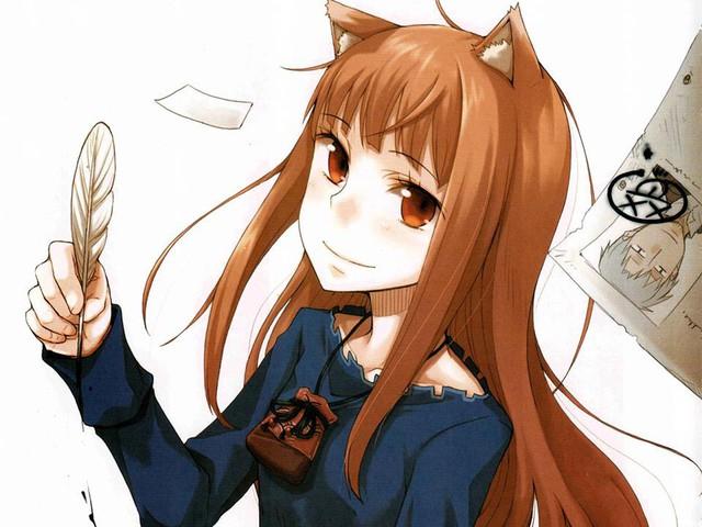 Sói và Gia vị: Tiểu thuyết phiêu lưu kỳ ảo cực hấp dẫn dành cho người yêu thích anime - Ảnh 2.