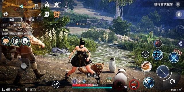 Tựa game có gái xinh bậc nhất Black Desert Mobile sẽ phát hành toàn thế giới trong 2019, một phiên bản khác sẽ lên PlayStation 4 - Ảnh 3.