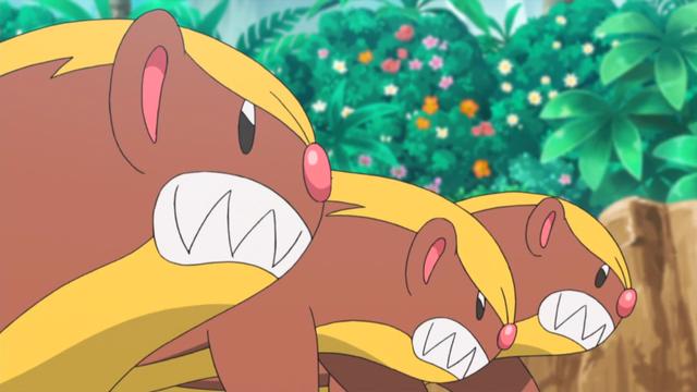 """Có 4 chú Pokemon mà chưa ai từng biết tới, kể cả fan 20 năm cũng """"quỳ"""" không nhớ nổi tên - Ảnh 6."""