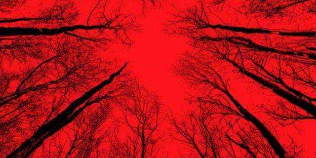Những điều cần biết về game kinh dị Blair Witch, hậu duệ xịn xò của Outlast - Ảnh 7.