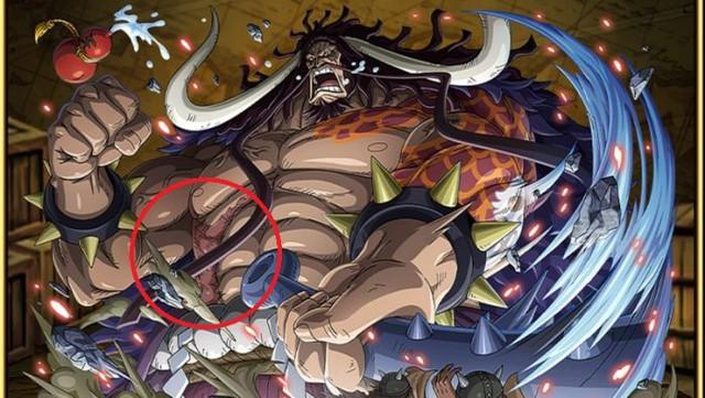 One Piece: Người đã gây ra vết sẹo duy nhất của Tứ Hoàng Kaido mạnh mẽ cỡ nào? - Ảnh 2.